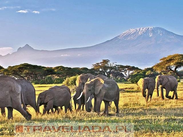 Kenia Powitanie z Afryką